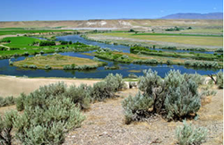 Idaho5