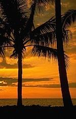 Sunrise & Sunset 3025.jpg