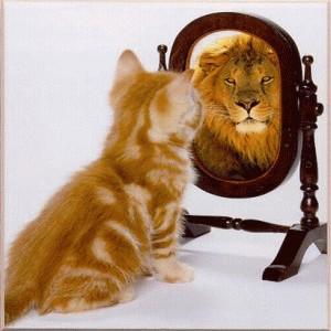LionMirror