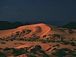 Desert 0905.jpg