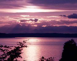 Sunset & Sky 181